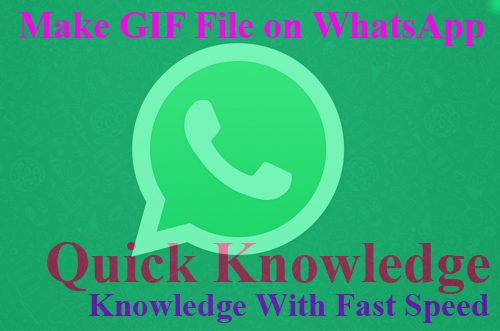 How to Make GIF File on WhatsApp