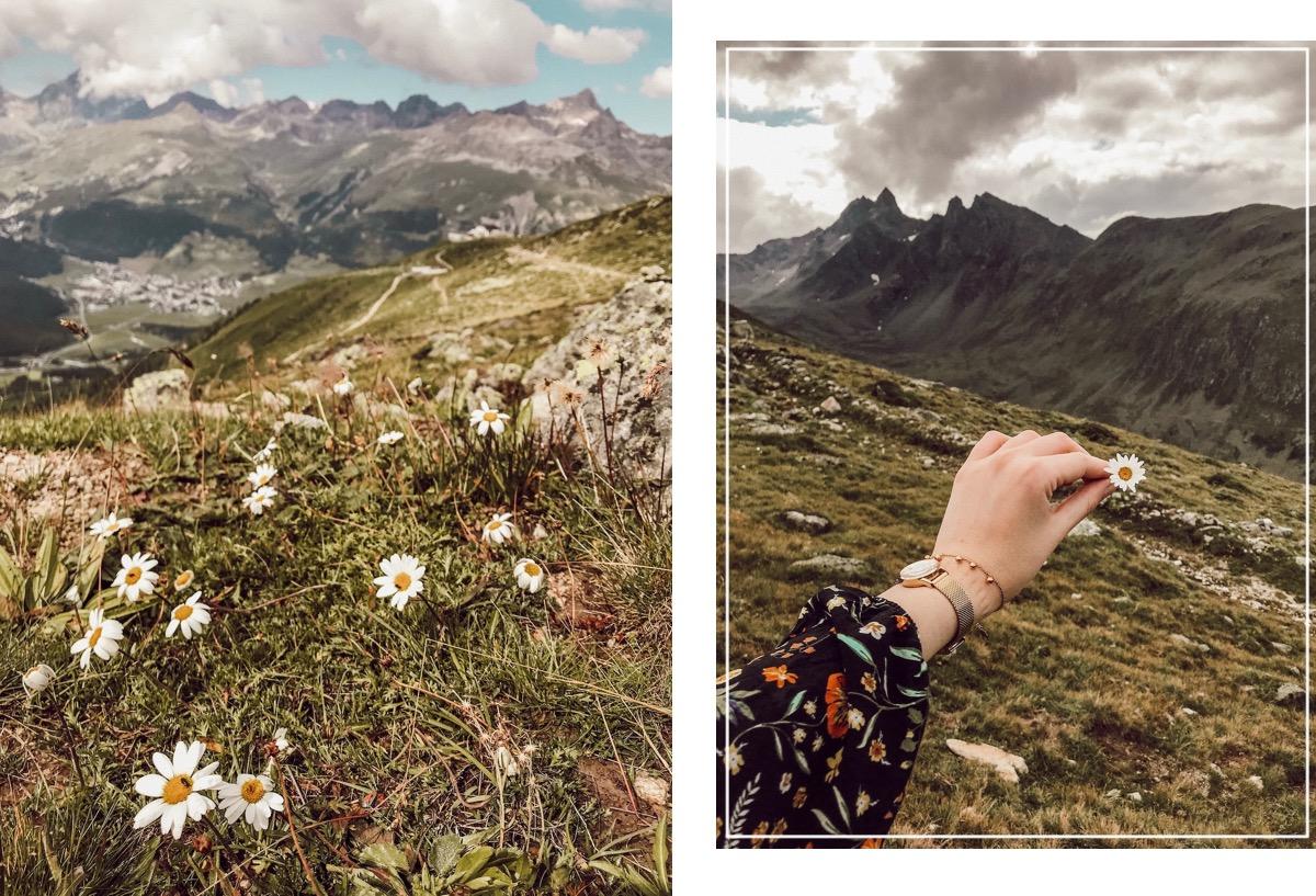 Wandern im Engadin im Sommer - Wanderung auf  dem Muottas Muragl zum Lej Muragl. Rundwanderung mit Murmeltieren. Hiking Schweiz St. Moritz Glacier Express