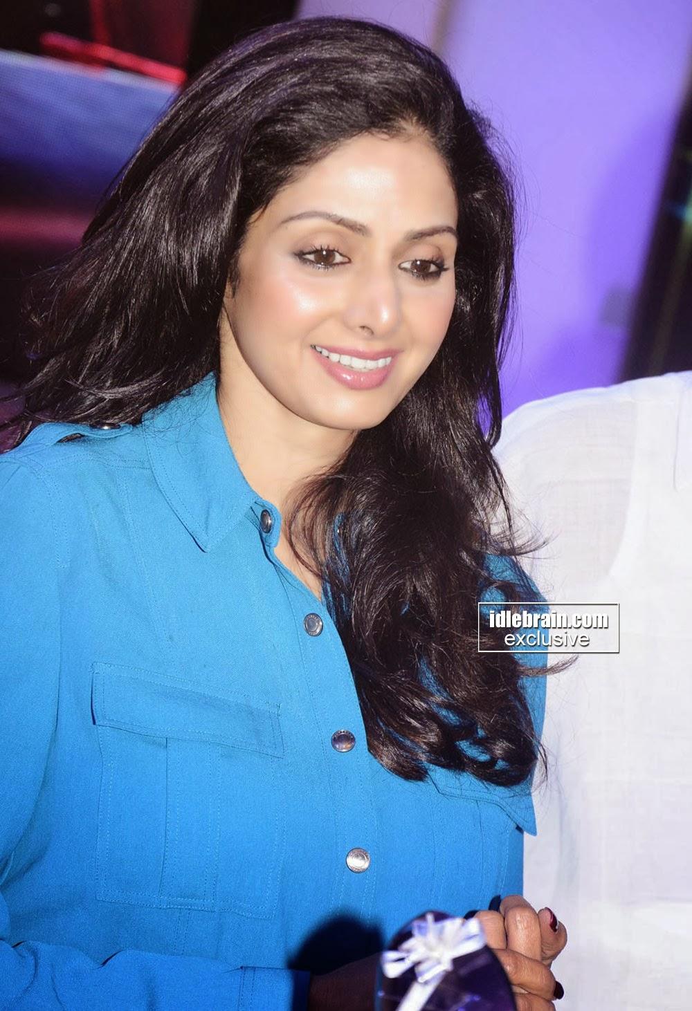 Gorgeous Sridevi Hot 2014 Stills  Hot Celebs-1362