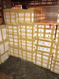cua biển xuất khẩu sang Thái Lan