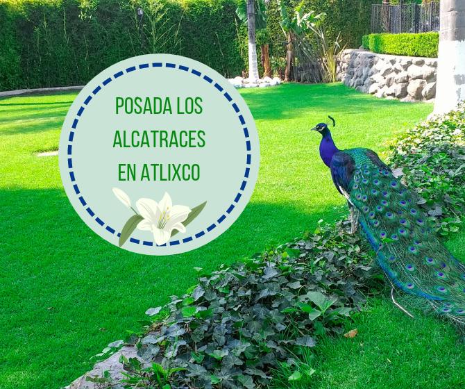 ATLIXCO EN FAMILIA: POSADA LOS ALCATRACES