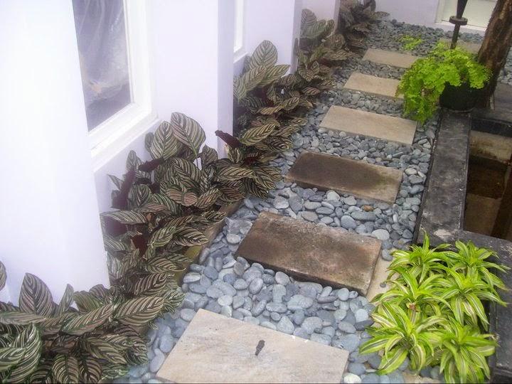 Dry Minimalist Garden Design Ideas