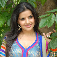 Madhu sharma latest stills