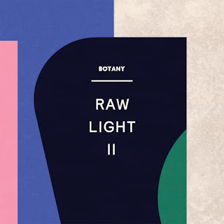 Botany - Raw Light II (2017) -  Album Download, Itunes Cover, Official Cover, Album CD Cover Art, Tracklist