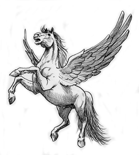 analisi del design unipegaso.it