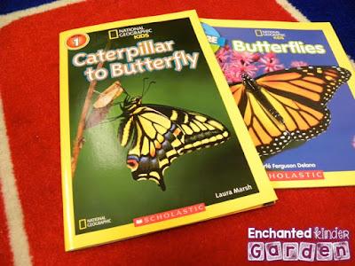 Butterfly books for kindergarten