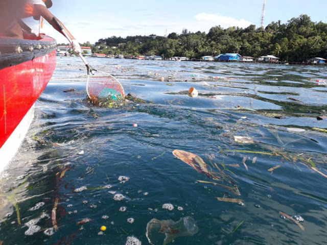 Alumni Smunda Angkat 70 Kantong Sampah Dari Teluk Humbold