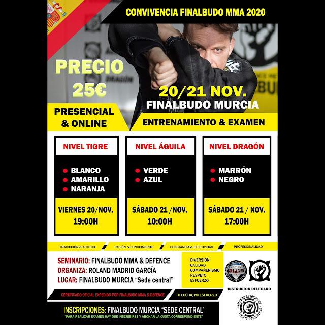 Convivencia FINALBUDO MMA 2020 IPM