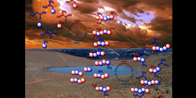 The first polymers of life may have arisen by a daily process still observed on Earth today, such as the repeated drying and refilling of pond water. Credit: Ram Krishnamurthy / Center for Chemical Evolution
