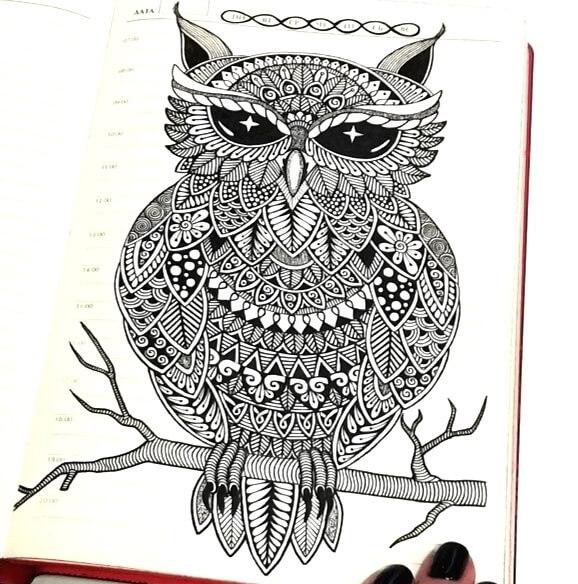 Owl by T. Gunchak