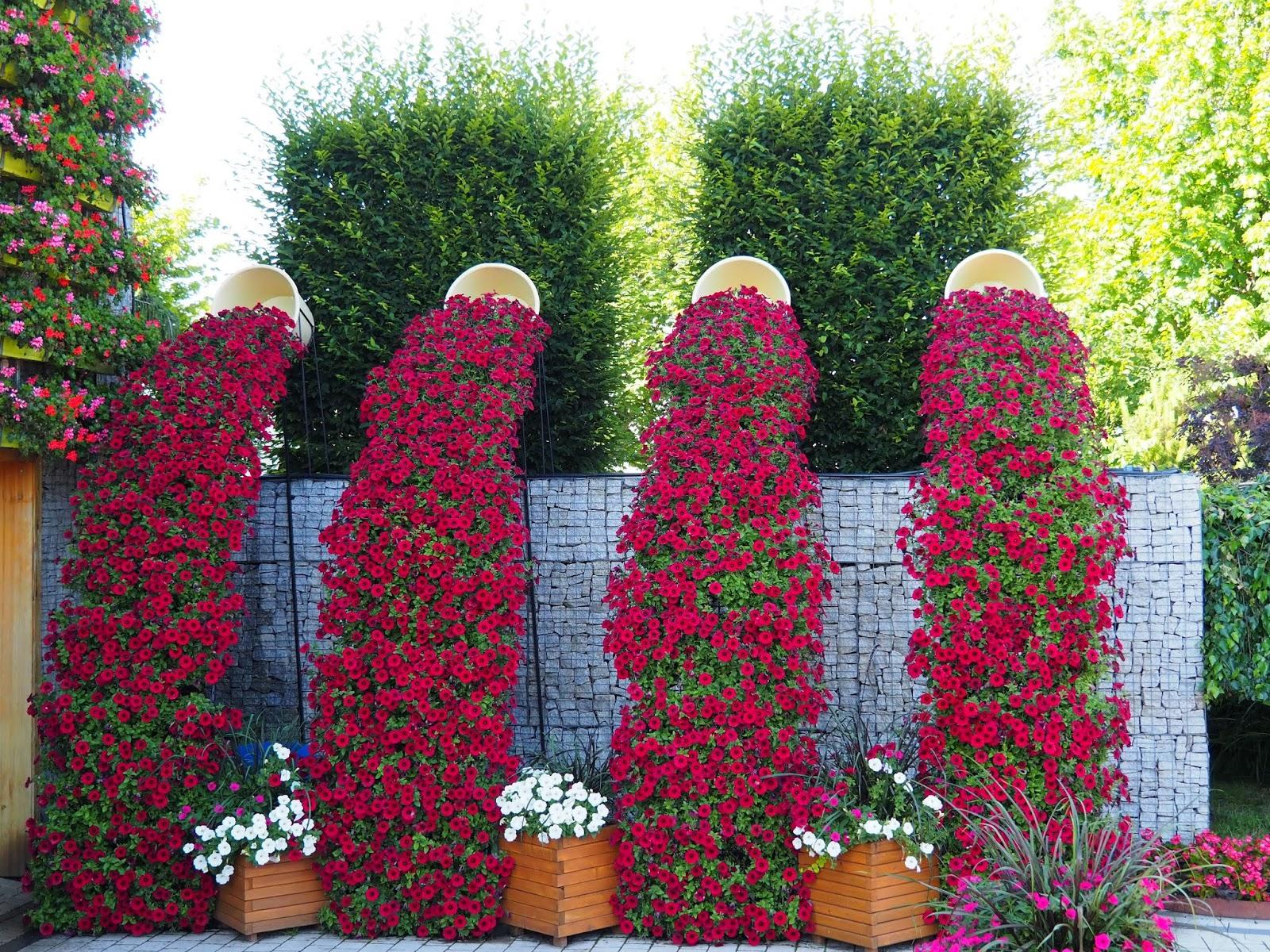 Festiwal kwiatów Kłodzko
