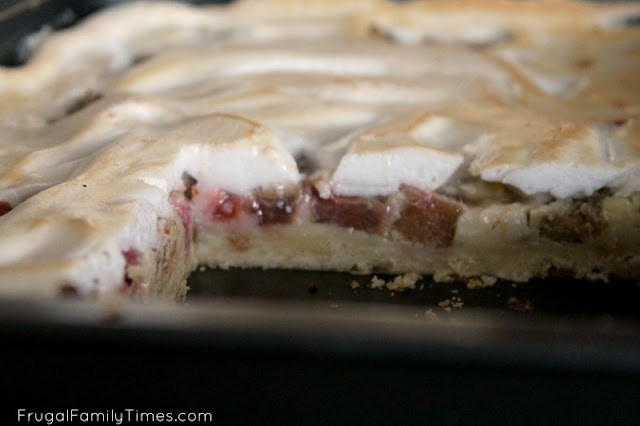 pan of rhubarb custard bars