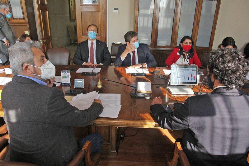 ministros Cerda y Rubilar fueron al Congreso a explicar el IFE