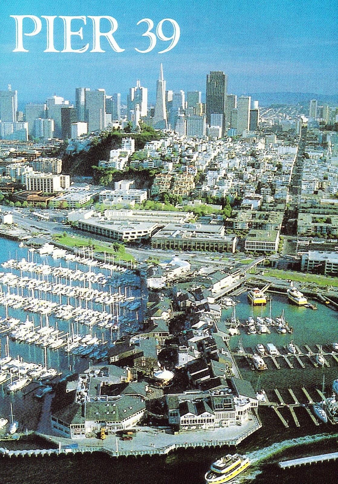 San francisco california pier 39 webcam
