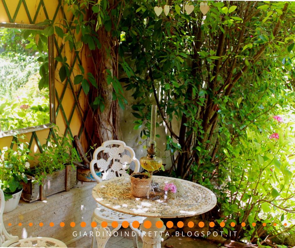 Le piante per un angolo di frescura in giardino un giardino in diretta - Piante per giardino ...