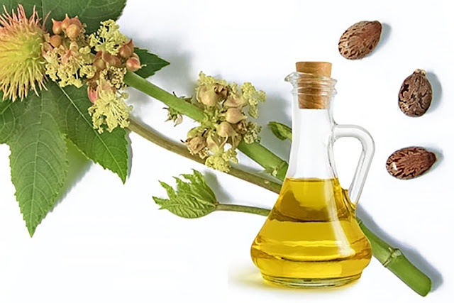 Hair Health Benefits of Castor Oil