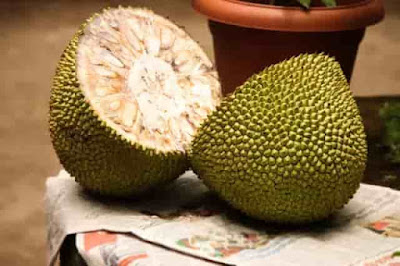 Benefits of jackfruit and jackfruit seeds during pregnancy