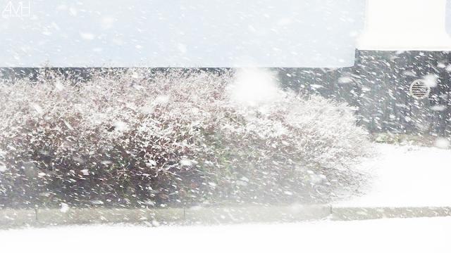 Snevejrs Søndag og Hygge