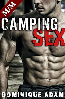 http://uneenviedelivres.blogspot.fr/2016/09/camping-sex.html