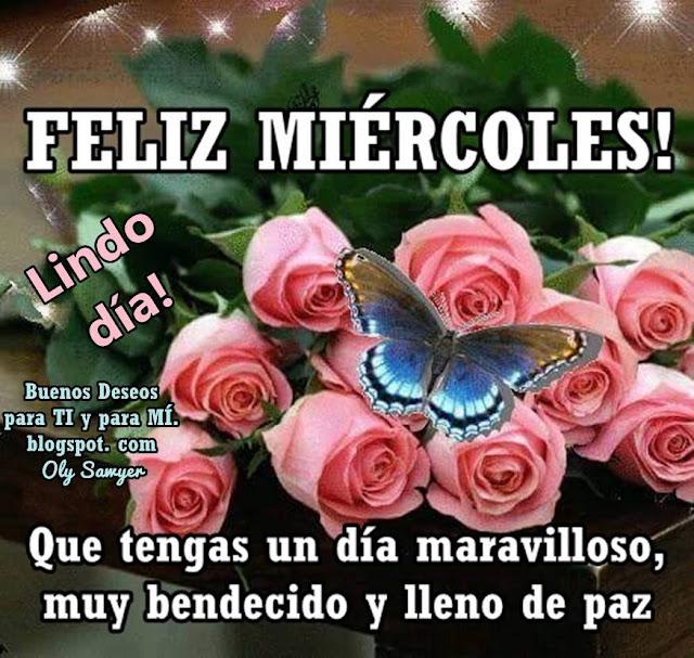 FELIZ MIÉRCOLES ! Que tengas un día maravilloso, muy bendecido y lleno de paz.   LINDO DÍA!