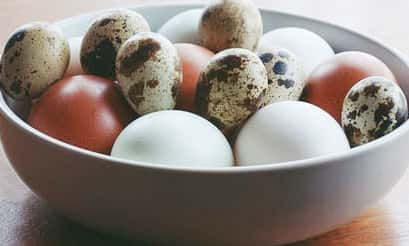 Does  Leucoderma sufferer Can consume Eggs