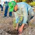 Inicia Verde Sonora campaña de forestación en la entidad
