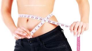 Menghindari Konsumsi Nasi Pada Diet Paleo Impian tubuh ideal :: PortalBisnisBersama