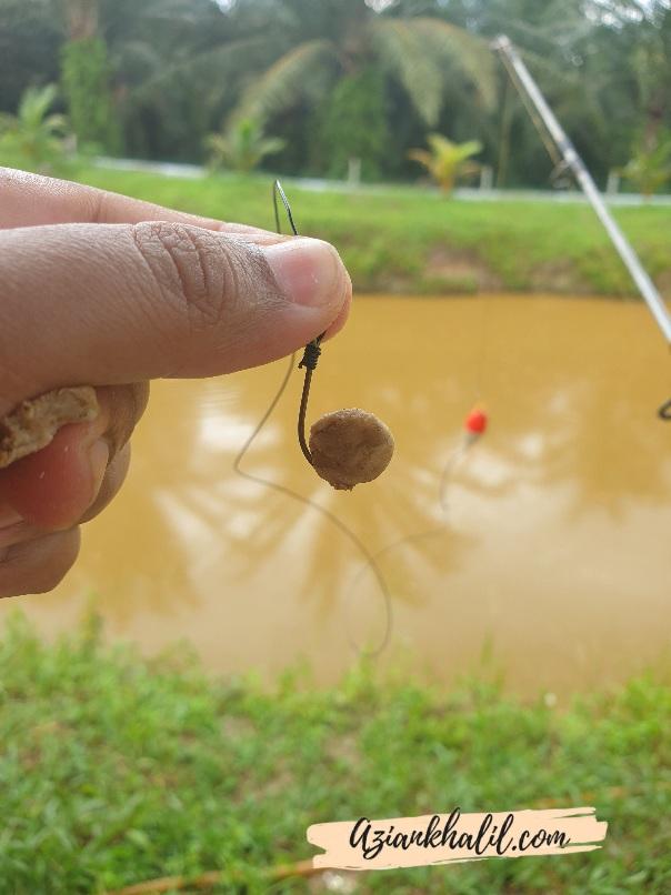 Mancing kolam