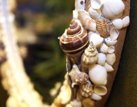 shell frame