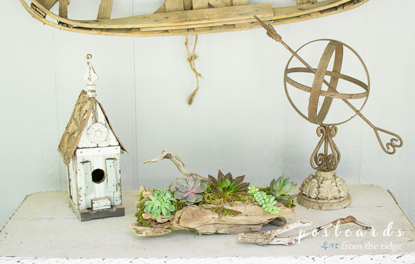 rustic birdhouse and garden sphere with driftwood succulent planter