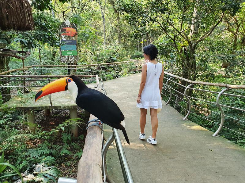 Foz do Iguaçu Parque das Aves