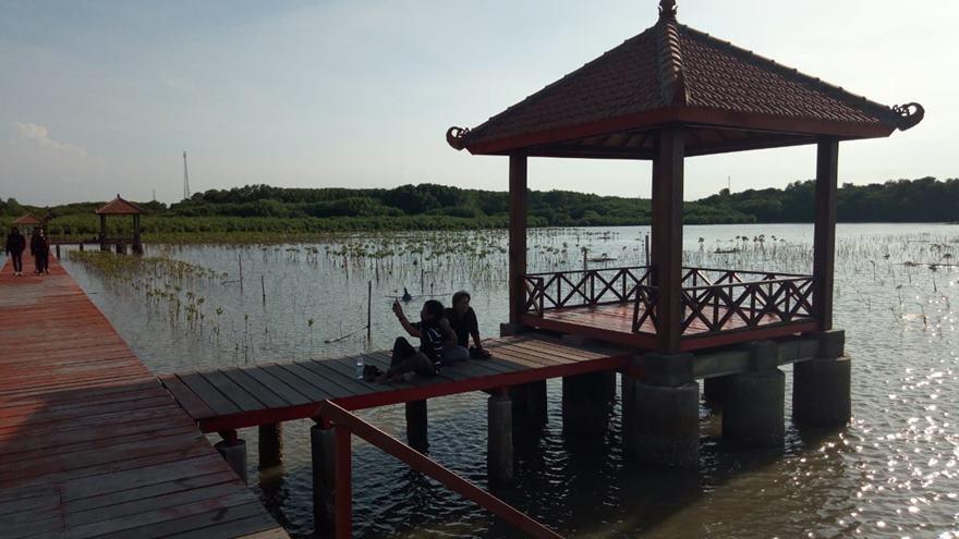 Gambar usaha dibidang Budidaya