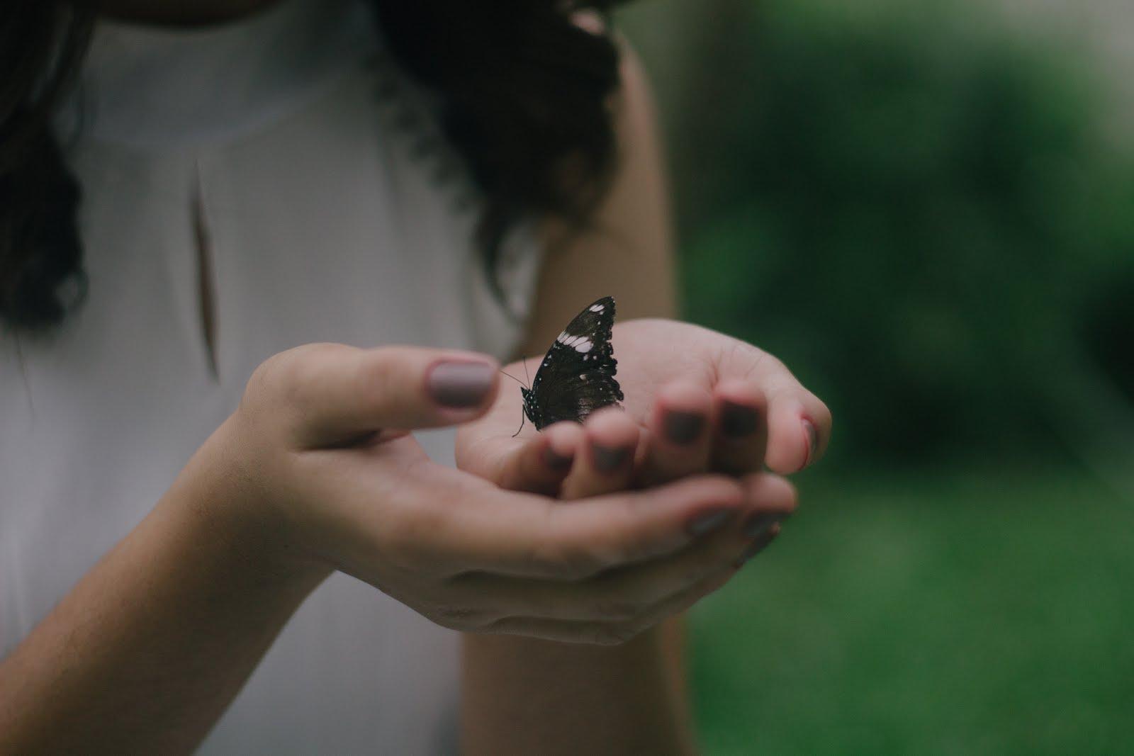 Jeśli nie stać Cię na miłość, zdobądź się chociaż na łagodność