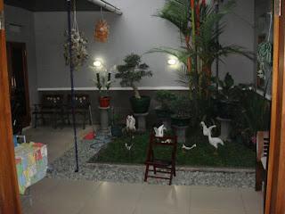 Tanaman Dalam Ruangan Rumah Minimalis Modern