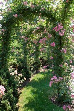 De petits coins chiavi arrugginite giardini segreti e - Giardini fantastici ...