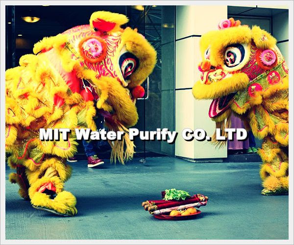 Lion Dance in The Traditional Chinese Lunar New Year of The Spring Festivities TO Lantern Festival Day -by MIT Water Purify Professional Team Company Limited