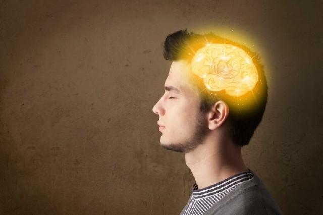 معززات طبيعية للذاكرة