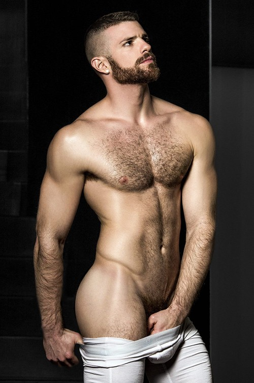Handsome naked hairy male model and well hung hairy gay young greeks