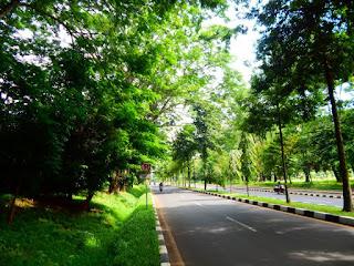 Tipe-Tipe Hutan Kota Menurut Lokasinya