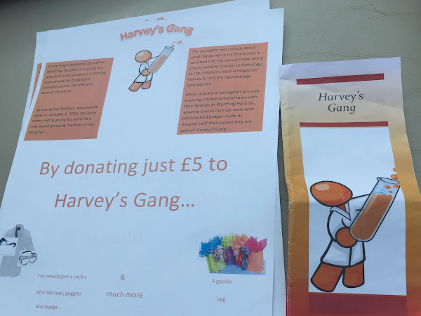 Emily produces a Harvey's gang brochure for School