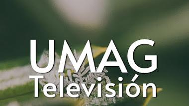 UMAG Televisión | Educativos y Culturales, Música y Radios Online, Televisión en Vivo