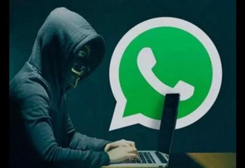 Quinze mil brasileiros têm o WhatsApp clonado por dia; saiba como se proteger