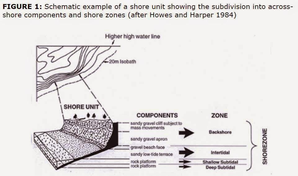 Blog Borg Collective: The Chevron Exercise: Why the