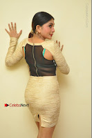 Actress Pooja Roshan Stills in Golden Short Dress at Box Movie Audio Launch  0115.JPG