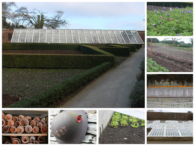 Heligan Kitchen garden collage
