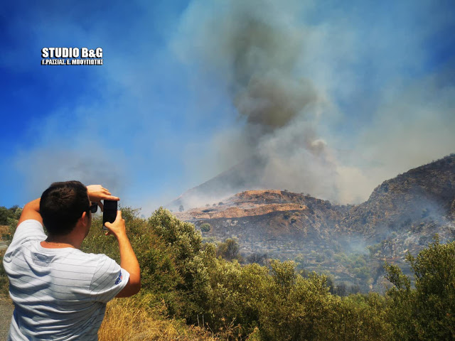 Η Π.Ο.Ε-ΥΠ.ΠΟ για τη φωτιά στον Αρχαιολογικό χώρο των Μυκηνών