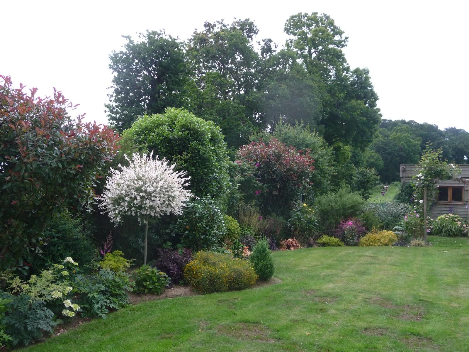 Ma terre de bruy re la vie de mon petit jardin - Quand tailler saule crevette ...