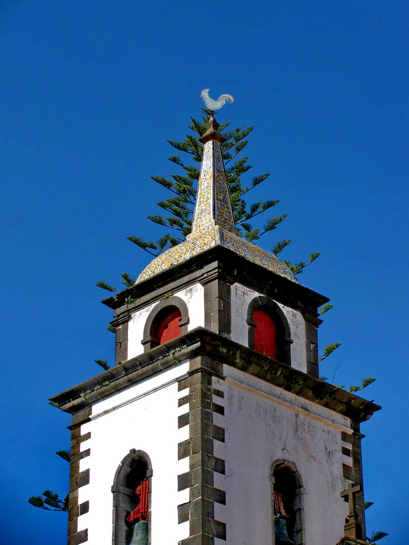tower with branches
