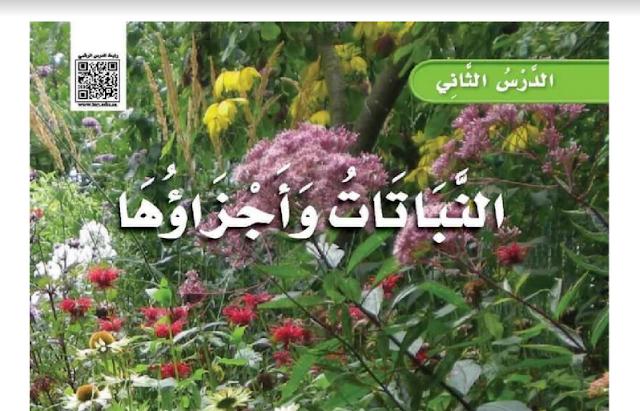 حل درس النباتات وأجزاؤها العلوم للصف الثالث ابتدائي