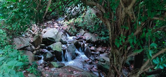 Ashoka Jahara Waterfall, Jajpur